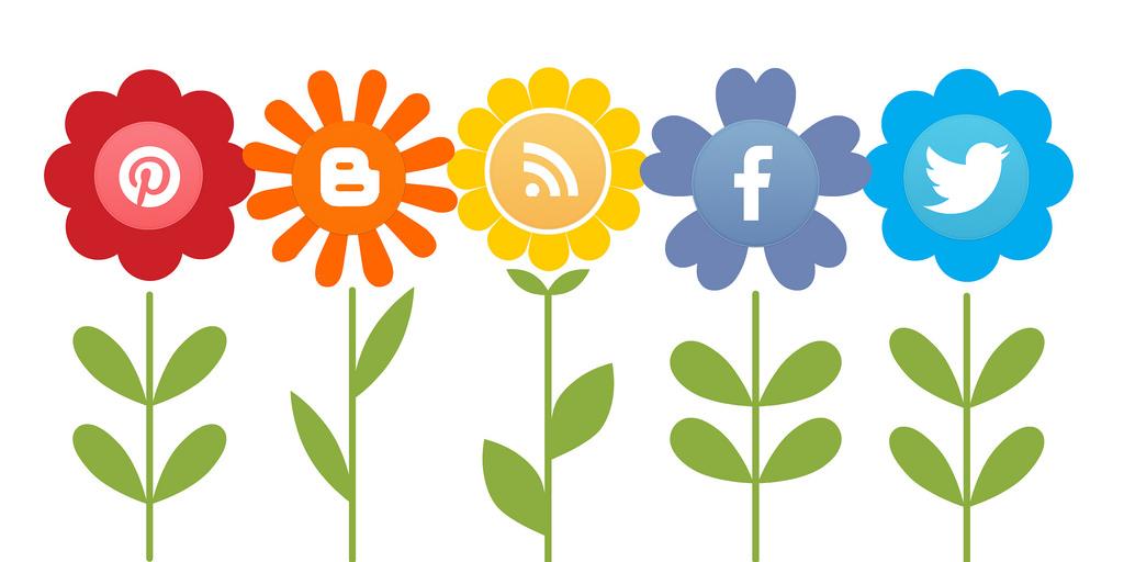 Gestione dei social media